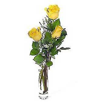 Van internetten çiçek siparişi  3 adet kalite cam yada mika vazo gül