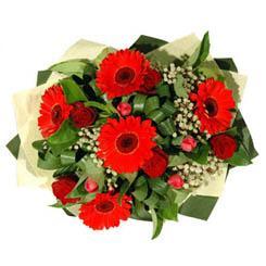Van ucuz çiçek gönder   5 adet kirmizi gül 5 adet gerbera demeti