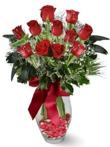 9 adet gül  Van internetten çiçek satışı  kirmizi gül