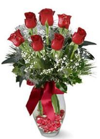 Van internetten çiçek siparişi  7 adet kirmizi gül cam vazo yada mika vazoda
