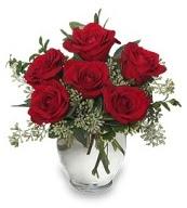 Vazo içerisinde 5 adet kırmızı gül  Van çiçekçi mağazası