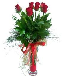 vazo içerisinde 5 kırmızı gül  Van güvenli kaliteli hızlı çiçek