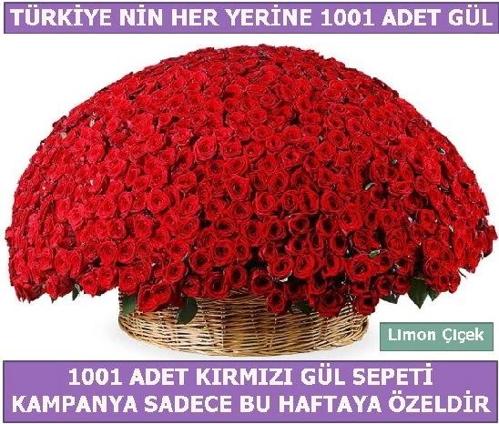 1001 Adet kırmızı gül Bu haftaya özel  Van İnternetten çiçek siparişi