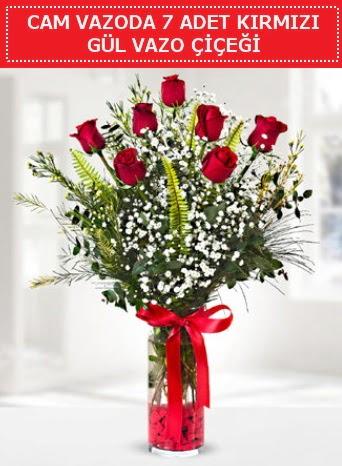 Cam vazoda 7 adet kırmızı gül çiçeği  Van çiçek gönderme sitemiz güvenlidir
