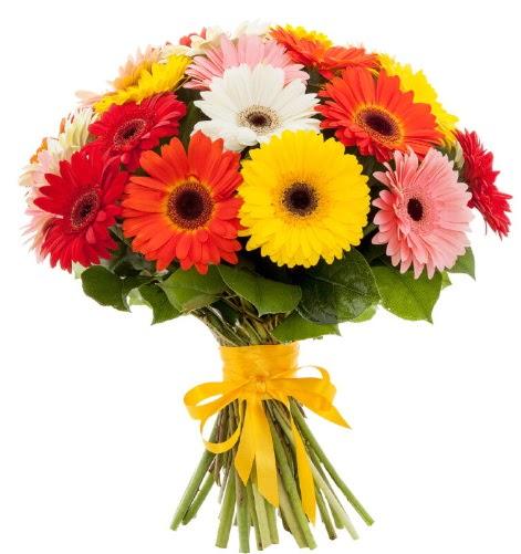 Gerbera demeti buketi  Van çiçek satışı