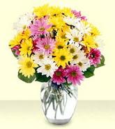 Van internetten çiçek siparişi  mevsim çiçekleri mika yada cam vazo