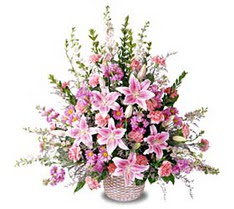 Van çiçek siparişi sitesi  Tanzim mevsim çiçeklerinden çiçek modeli