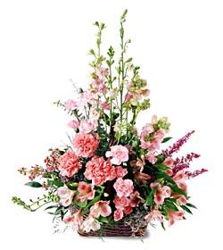 Van ucuz çiçek gönder  mevsim çiçeklerinden özel