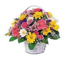 Van çiçek , çiçekçi , çiçekçilik  mevsim çiçekleri sepeti özel