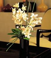 Van çiçekçiler  cam yada mika vazo içerisinde dal orkide