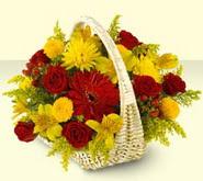 Van 14 şubat sevgililer günü çiçek  sepette mevsim çiçekleri