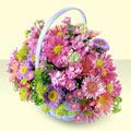 Van yurtiçi ve yurtdışı çiçek siparişi  bir sepet dolusu kir çiçegi  Van çiçek gönderme sitemiz güvenlidir