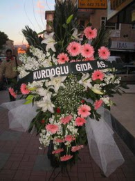 kazablanka,gerbera,sebboy ferforje  Van çiçekçi mağazası
