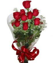 9 adet kaliteli kirmizi gül   Van online çiçekçi , çiçek siparişi