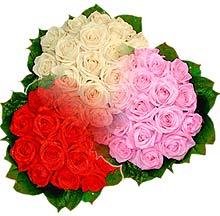3 renkte gül seven sever   Van çiçek , çiçekçi , çiçekçilik