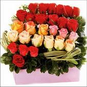 15 adet renkli gül ve cam   Van çiçekçi mağazası