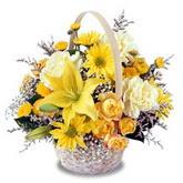sadece sari çiçek sepeti   Van çiçek gönderme sitemiz güvenlidir