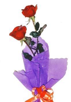 2  adet kirmizi gül buketi   Van çiçek , çiçekçi , çiçekçilik