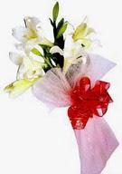Van çiçek , çiçekçi , çiçekçilik  ince vazoda gerbera ve ayi