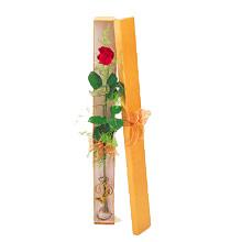 ince  kutuda  1  gül   Van çiçek yolla
