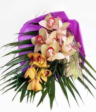 Van cicekciler , cicek siparisi  1 adet dal orkide buket halinde sunulmakta
