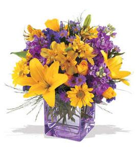 Van çiçek mağazası , çiçekçi adresleri  cam içerisinde kir çiçekleri demeti