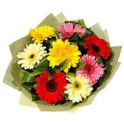 9 adet karisik gerbera demeti  Van çiçek mağazası , çiçekçi adresleri