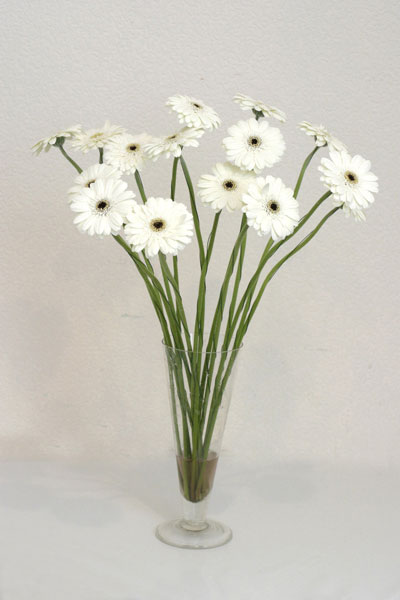 Van çiçek mağazası , çiçekçi adresleri  cam vazo içerisinde 17 adet sade gerbera