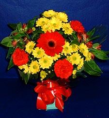 Van ucuz çiçek gönder  sade hos orta boy karisik demet çiçek