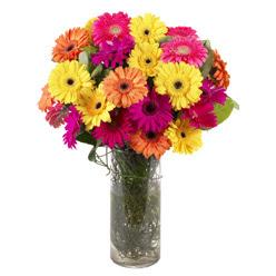 KARISIK GERBERALARDAN CAM VAZO TANZIMI  Van güvenli kaliteli hızlı çiçek