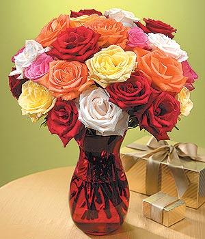 Van anneler günü çiçek yolla  13 adet renkli gül