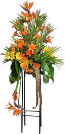Van çiçek siparişi sitesi  perförje tanzimi dügün nikah ve açilislara
