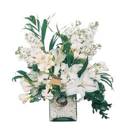Van internetten çiçek siparişi  sadece beyazlardan olusmus mevsim cam yada mika tanzim