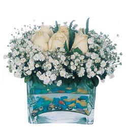 Van çiçekçi mağazası  mika yada cam içerisinde 7 adet beyaz gül