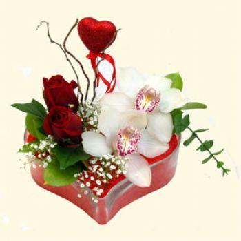 Van hediye sevgilime hediye çiçek  1 kandil orkide 5 adet kirmizi gül mika kalp