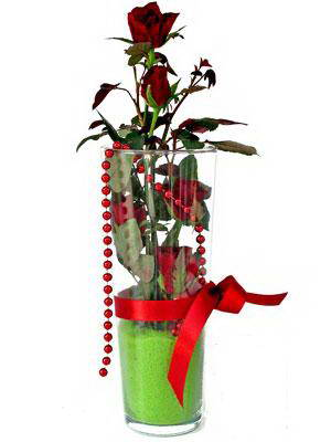 Van online çiçek gönderme sipariş  Cam yada mika içerisinde 9 adet kirmizi gül - sevdiklerinize özel