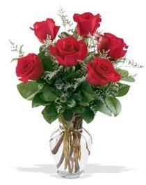 Van çiçek gönderme sitemiz güvenlidir  7 adet kirmizi gül cam yada mika vazoda sevenlere