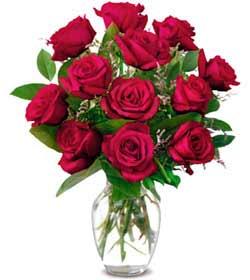 Van online çiçek gönderme sipariş  1 düzine kirmizi gül sevenlere özel vazo gülleri