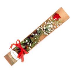 Van çiçek , çiçekçi , çiçekçilik  Kutuda tek 1 adet kirmizi gül çiçegi