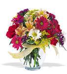 Van çiçek , çiçekçi , çiçekçilik  cam yada mika vazo içerisinde karisik kir çiçekleri