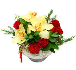 Van çiçek gönderme  1 adet orkide 5 adet gül cam yada mikada