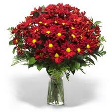 Van çiçek yolla  Kir çiçekleri cam yada mika vazo içinde