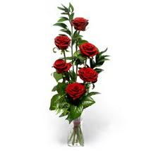 Van çiçek siparişi sitesi  cam yada mika vazo içerisinde 6 adet kirmizi gül