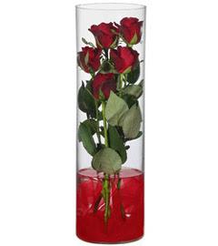 cam içerisinde 7 adet kirmizi gül  Van çiçekçiler
