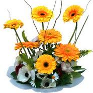 camda gerbera ve mis kokulu kir çiçekleri  Van çiçekçi telefonları