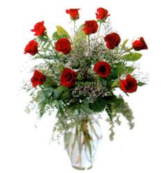 Vazo içerisinde 11 kirmizi gül  Van çiçek siparişi vermek