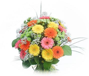 13 adet gerbera çiçegi buketi  Van online çiçek gönderme sipariş