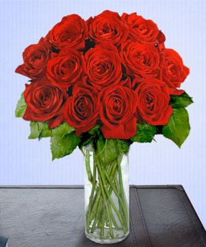 Anneme 12 adet cam içerisinde kirmizi gül  Van çiçek siparişi sitesi