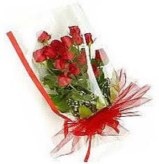 13 adet kirmizi gül buketi sevilenlere  Van çiçek siparişi vermek