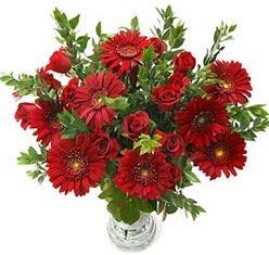 5 adet kirmizi gül 5 adet gerbera aranjmani  Van hediye çiçek yolla